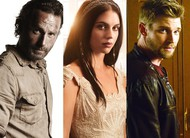 Comic-Con 2014: Walking Dead, Reign, Under the Dome e mais confirmados