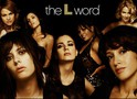 The L Word: Showtime dá novo status sobre sequência da série